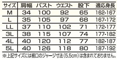 A-6600サイズ表